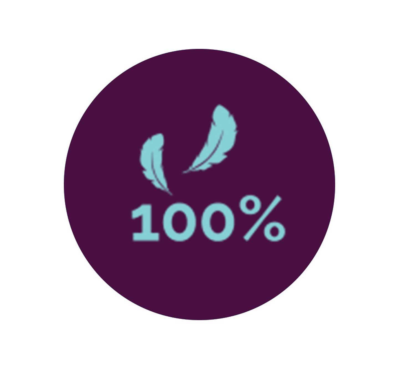 100% certified down
